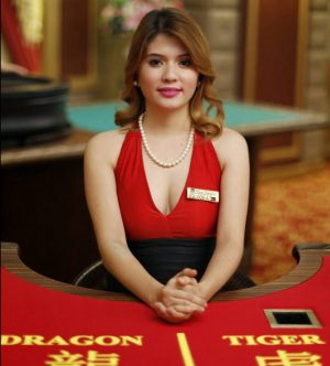 Dragon Tiger live casino